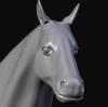 horsewip.png