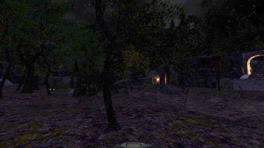 Petes_forest.jpg.65a354c78248c38d73e2c0d6a7232cd7.jpg