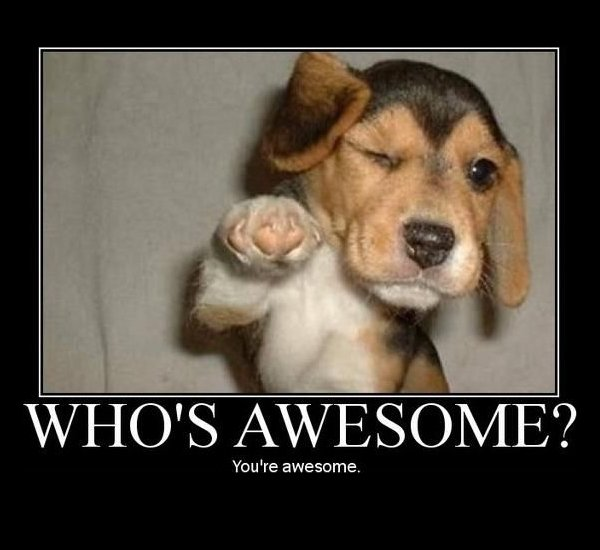 you're awesome.jpg